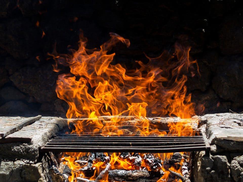 ohnisko-z-tehly-v-zahrade-s-rostom-na-grilovanie