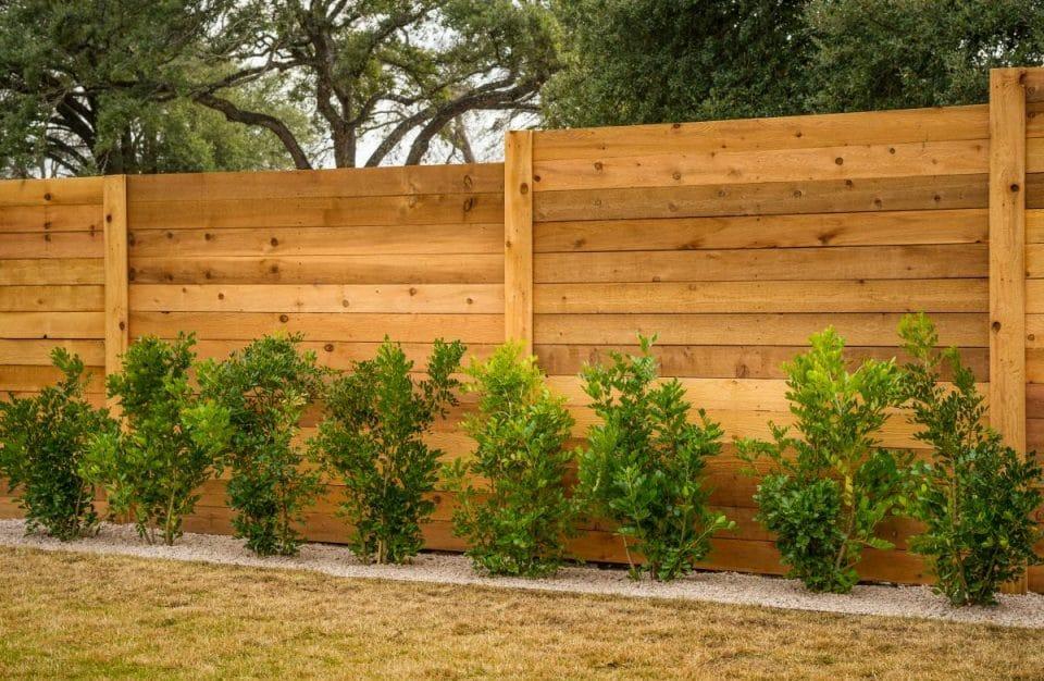 dreveny plot z doskami na dlzku a s malymi stromcekmi pred plotom