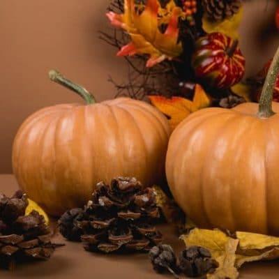 prirodne-prvky-na-diy-jesenne-dekoracie